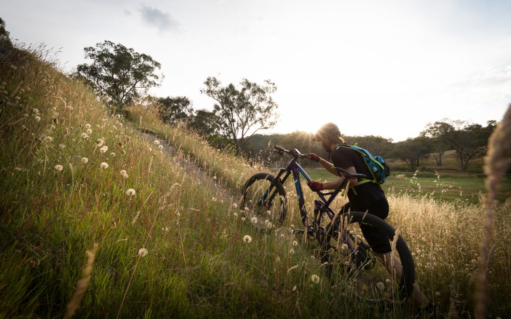 Mountain biking in Wodonga
